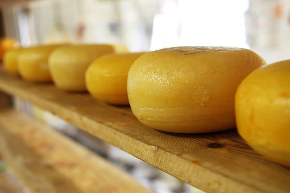 сыр при похудении можно