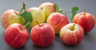 мармелад из яблок