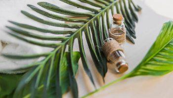Вред пальмового масла: миф или реальность?