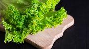 9 причин есть листовой салат каждый день
