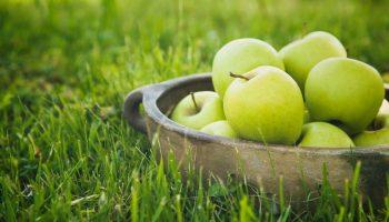 можно ли есть яблоки на ночь на диете