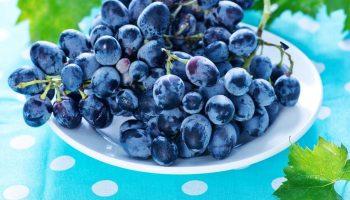 разгрузочный день на винограде